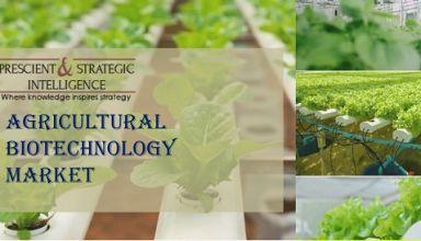 Agricultural Biotechnology Market