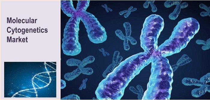 Molecular Cytogenetics Market